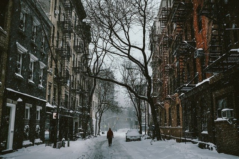 Image of a snowy city street with trees in winter